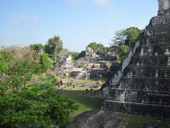 Tikal5